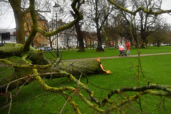 Парк «Клэпхем-Коммон» в Лондоне