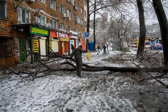 Фото:vl.ru