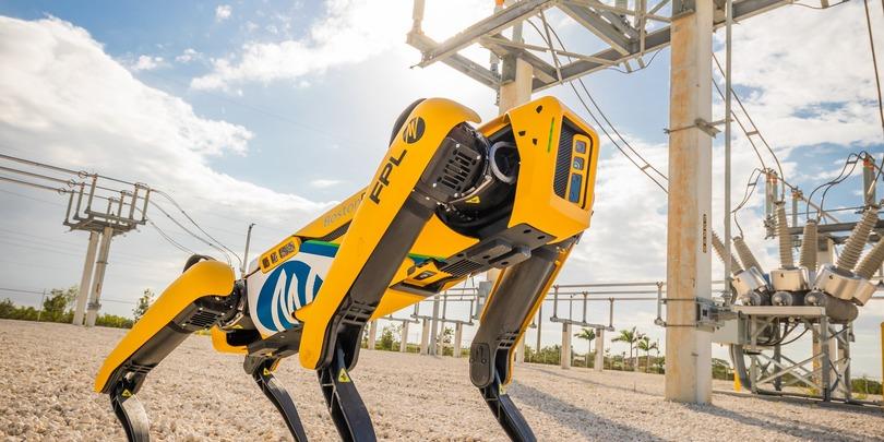 Фото:Boston Dynamics