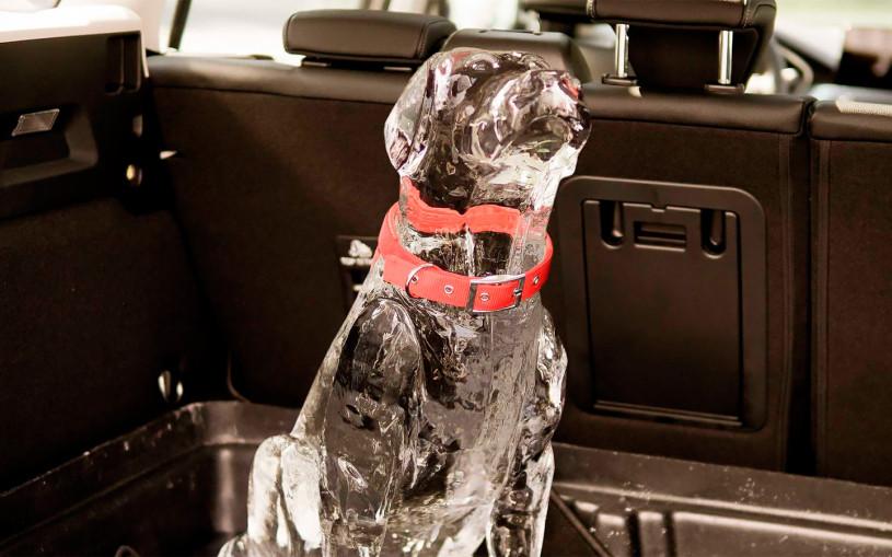 Ford показал на видео воздействие жары на ледяные фигуры детей в машине