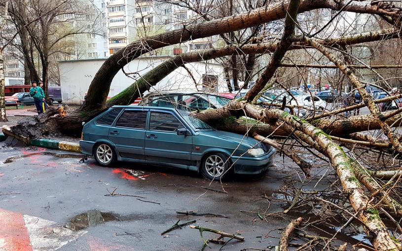Штормовой ветер создал проблемы водителям в Москве. Фото и видео