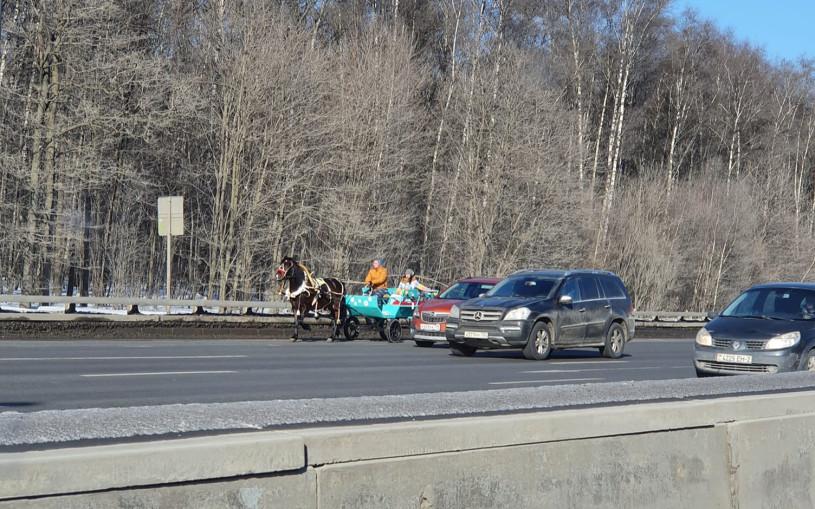 В Москве на МКАД выехала гужевая повозка с лошадью. Фото