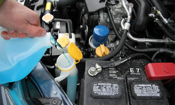 В автомобильных бачках для стеклоочистителя обнаружили опасные бактерии