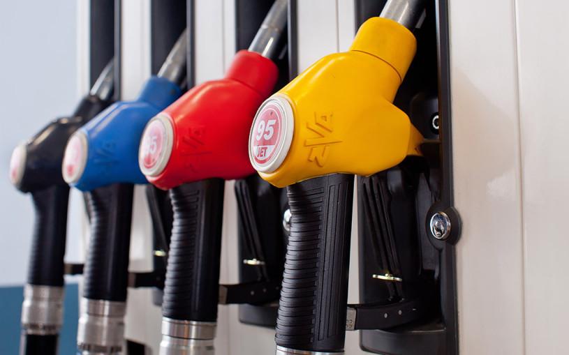 «Не хватает установок». Что будет с ценами на бензин осенью