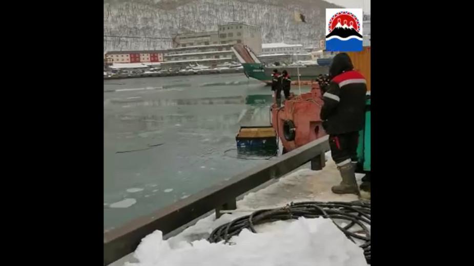 Видео: Правительство Камчатского края/vk