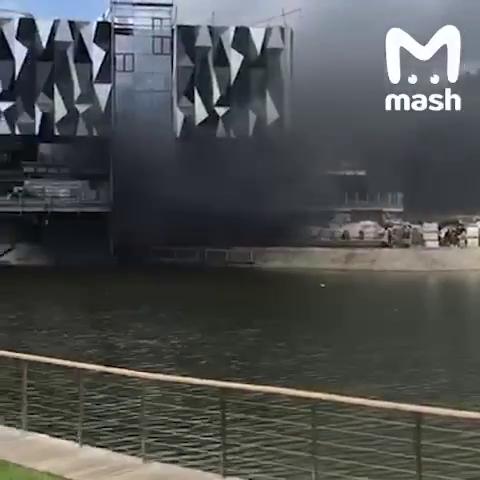 Видео: Mash