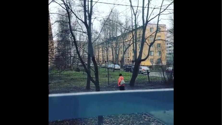 Видео: 1_dom_rf/instagram