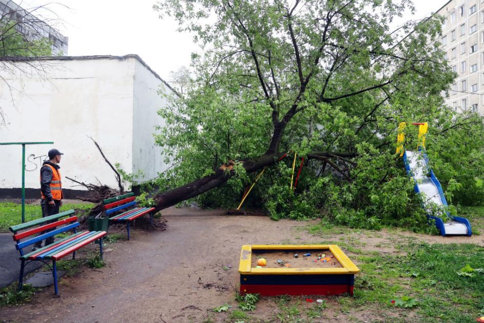 как ураган в москве 2017 последствия район богородское рейтинге Рейтинг