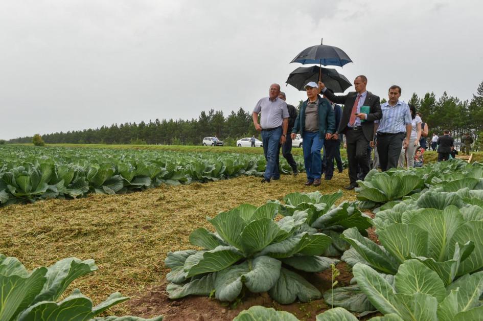 президент РТ Рустам Минниханов посещает агроферму «Вятские зори», 2015 год