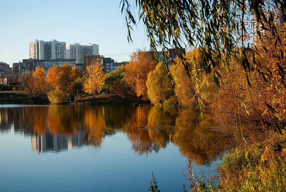 Район Москвы Митино