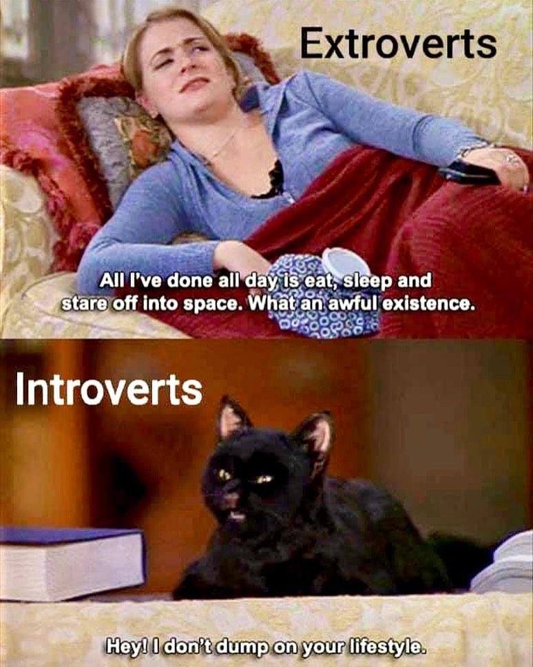 Экстраверт: «Целый день я лишь ем, сплю и гляжу в никуда. Какое ужасное существование». Интроверт: «Так, но яже не гоню на твой-то образ жизни!»