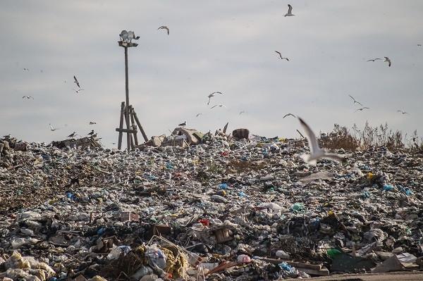 На полигоне ТБО на 9 км Велижанского трактаоколо 1,5 млн тонн отходов. Объект загружен примерно на 50-55%.