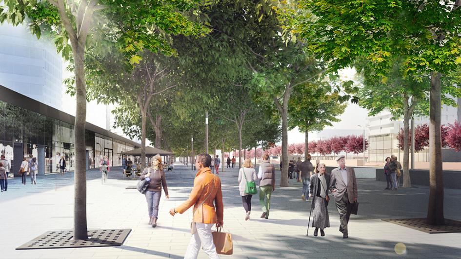 Александр Цимайло: «Проект пока не закончен, еще не высажены деревья, которые являются важной частью благоустройства»