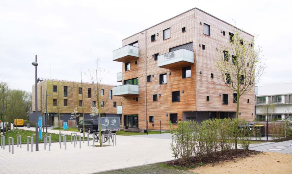 Технология деревянного строительства HOLZ 100 дляпроекта «умного» квартала. Проект «Smartалитет» команды Данияра Юсупова