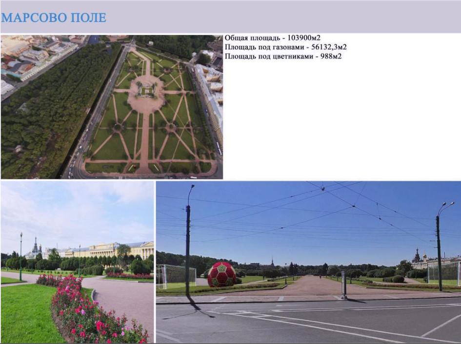 Фото: gov.spb.ru