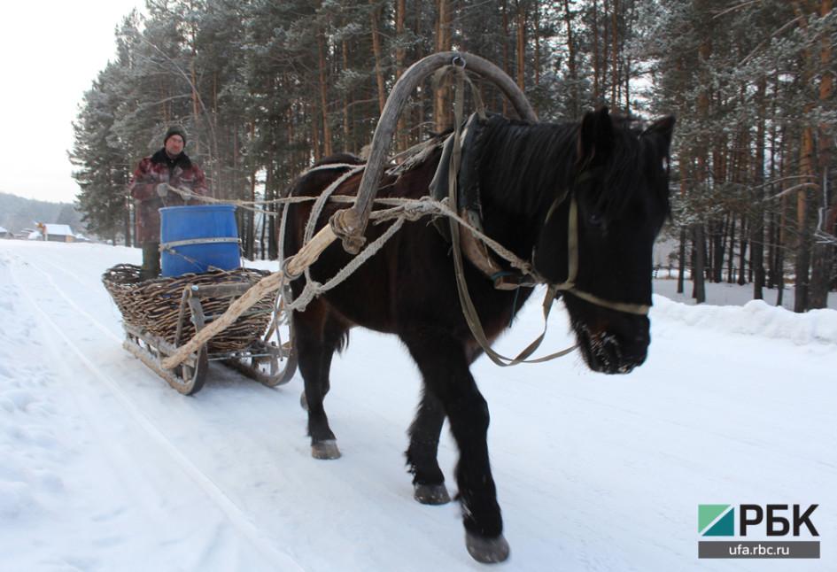 Воду местные жители и туристическая база возят из родника на лошадке