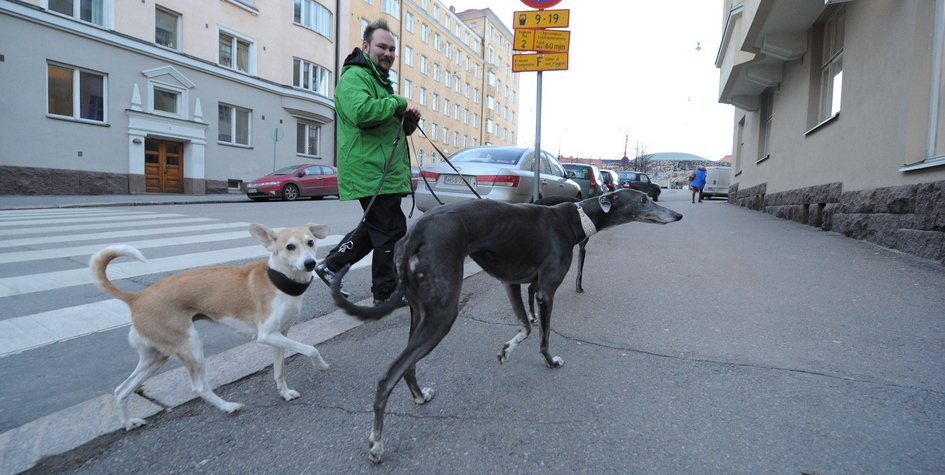 Фото: Шарифулин Валерий/ТАСС