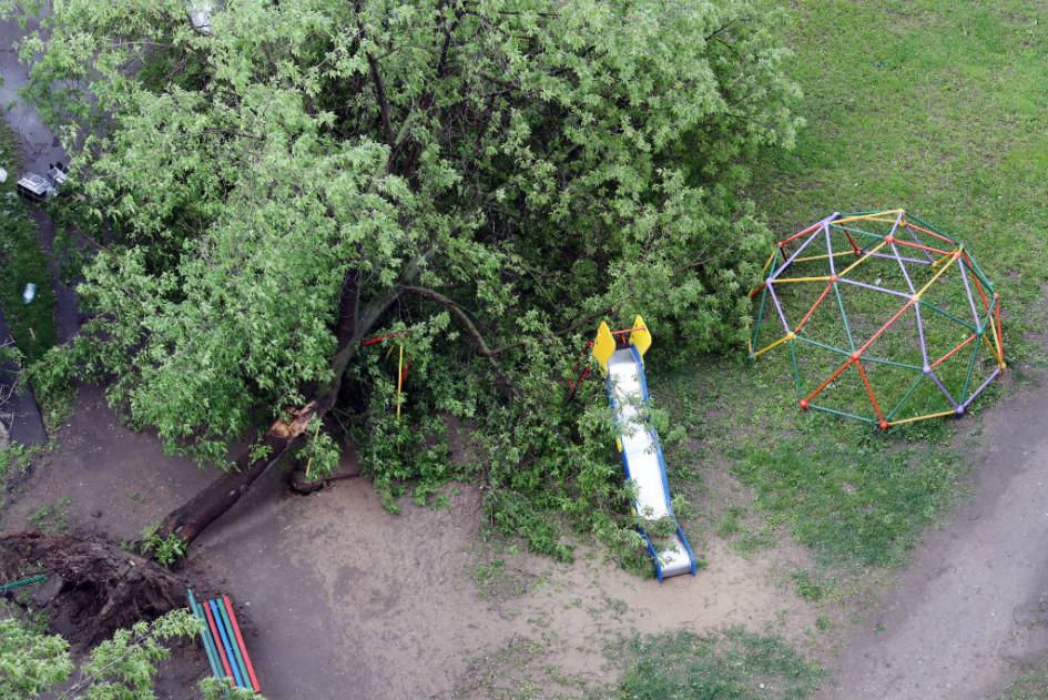 ураган в москве 2017 последствия район богородское рентгеновском снимке это
