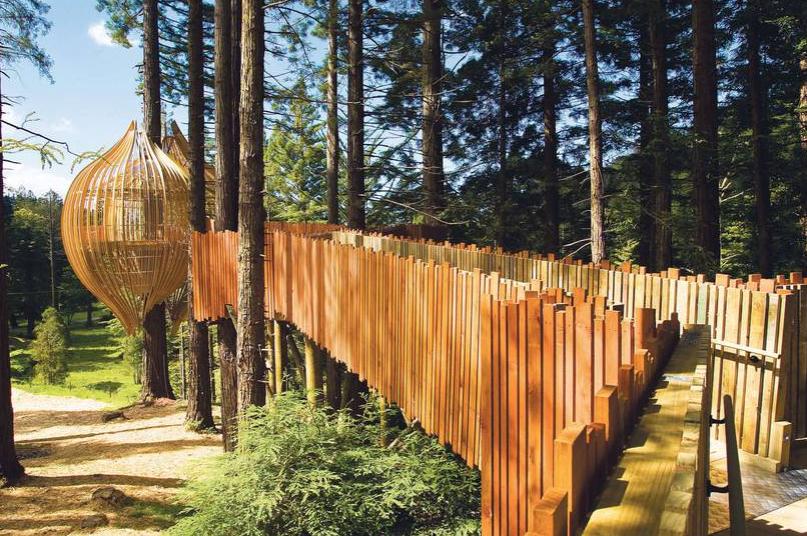 Фото: redwoodstreehouse.co.nz