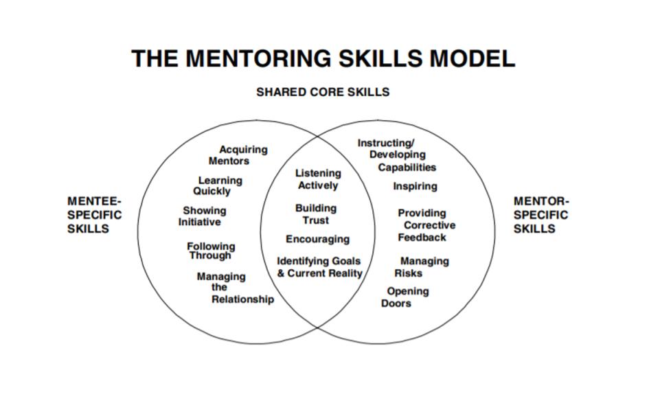 В модели Филлипс-Джонс для ментора и менти свой набор специальных навыков. Например, ментору нужно уметь управлять рисками и давать честную обратную связь, а менти— быстро учиться и проявлять инициативу