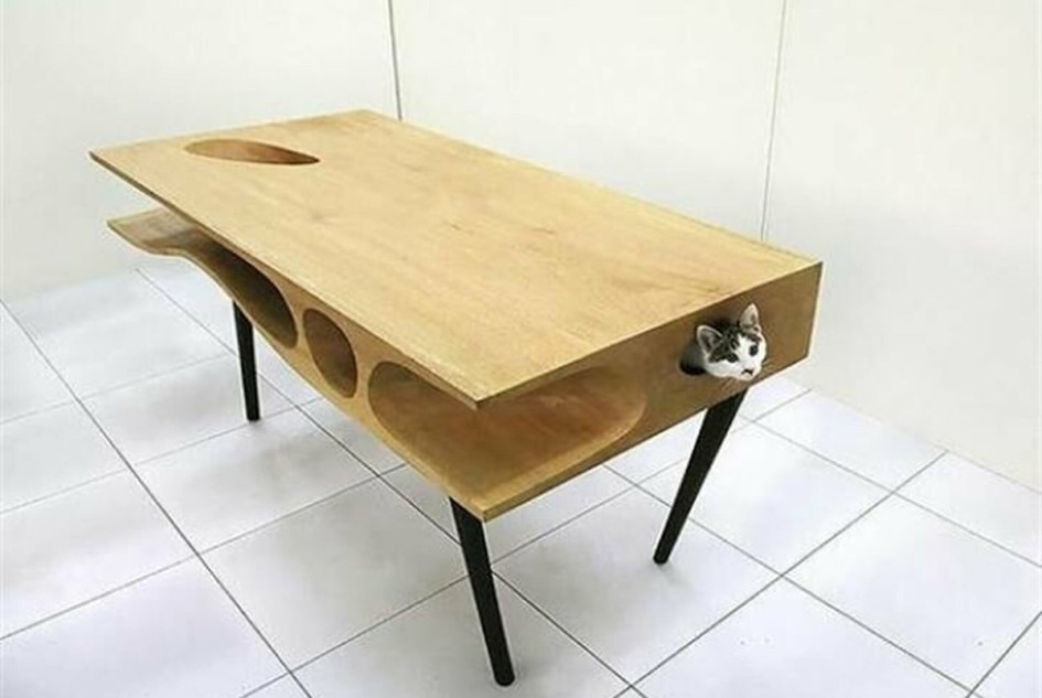 Стол с тоннелями для кошки