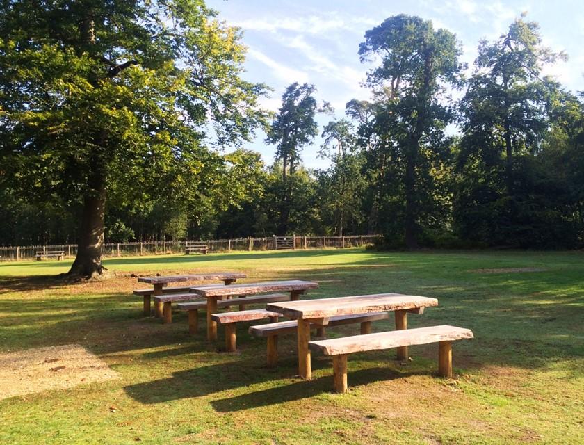 Фото: countryparks.buckscc.gov.uk