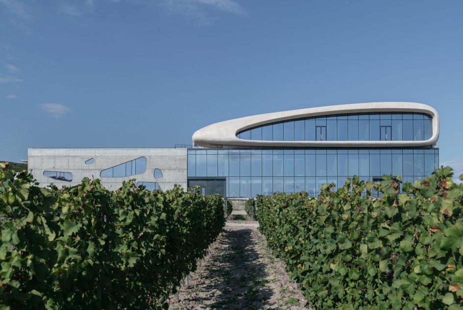 Фасад и виноградники гравитационной винодельни.
