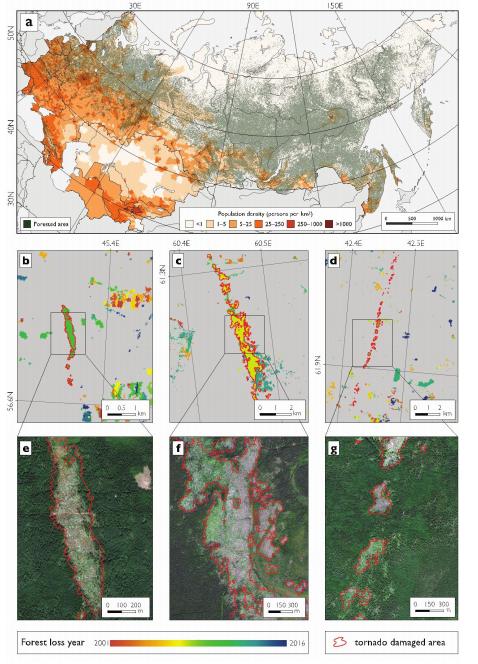 Установление информации о смерчах по спутниковым снимкам— определение участков специфически «закрученного» лесоповала