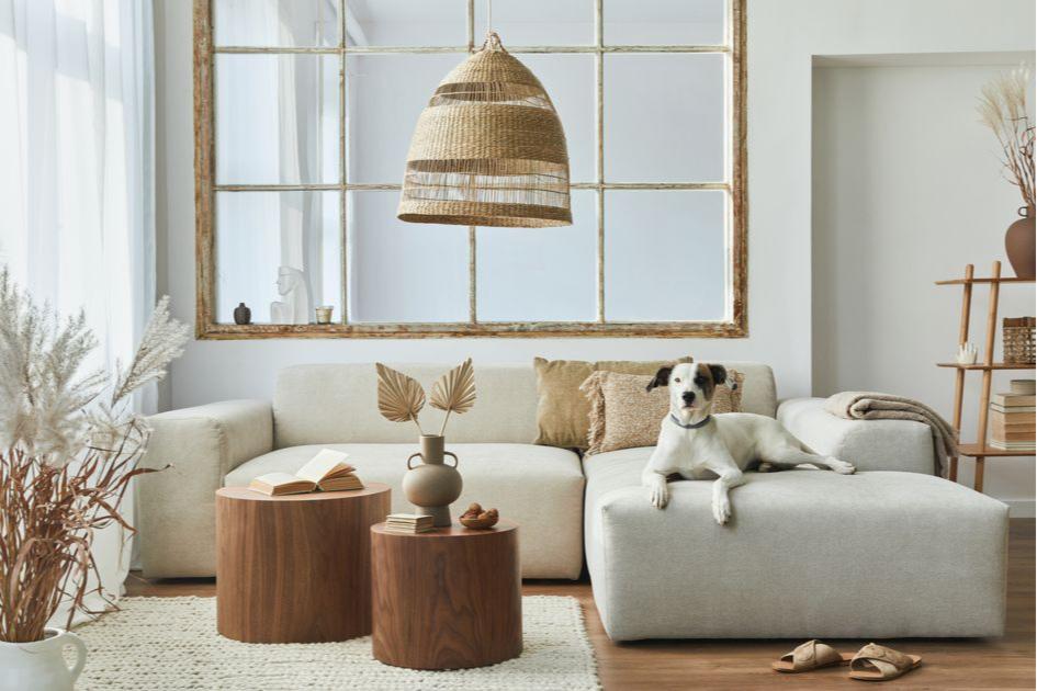Выбирайте качественный диван— он главный в гостиной