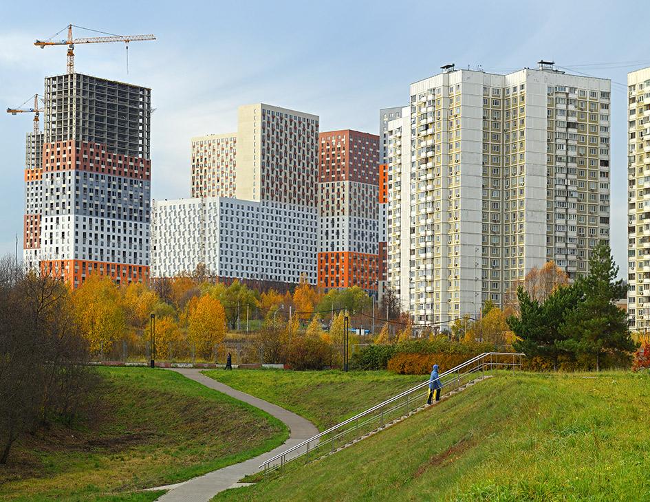 Фото: Popova Valeriya/shutterstock