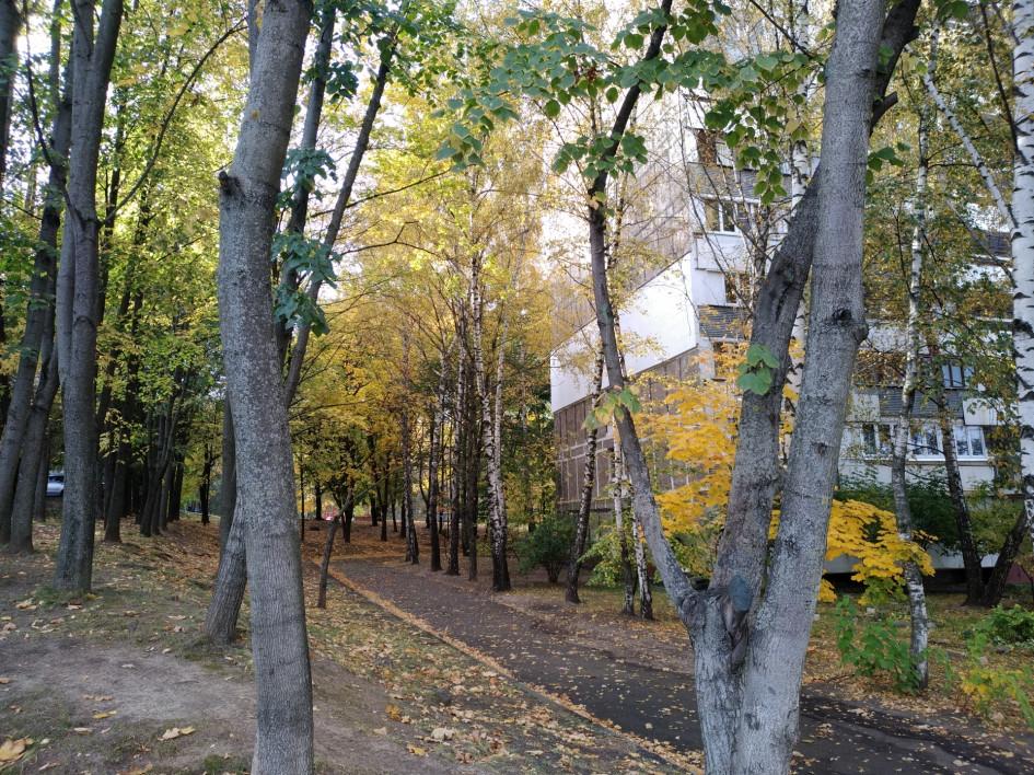 Основа жилого фонда района— это здания 1960–1980-х годов постройки