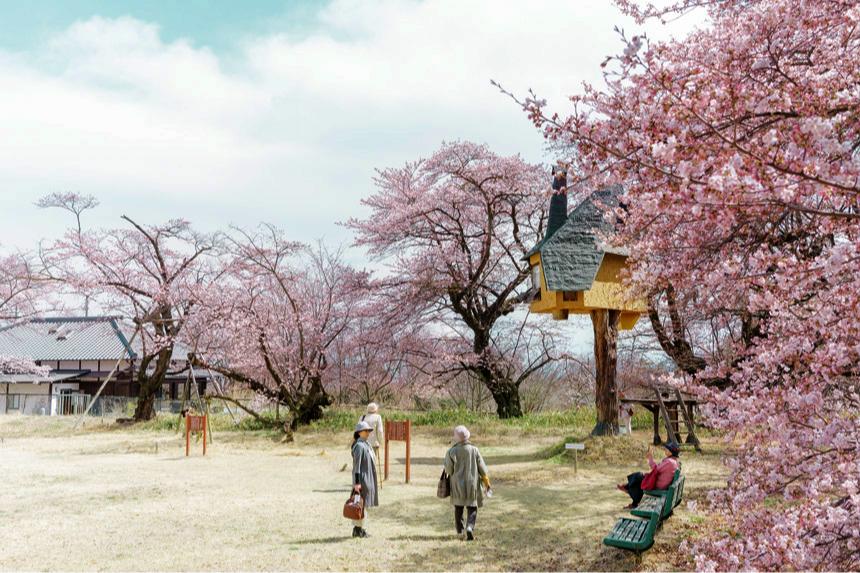 Фото: Kiyoharu Art Village