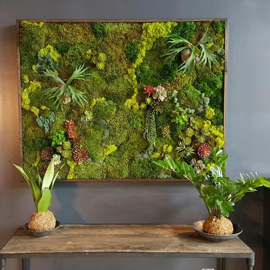 Фото: goodearthplants.com