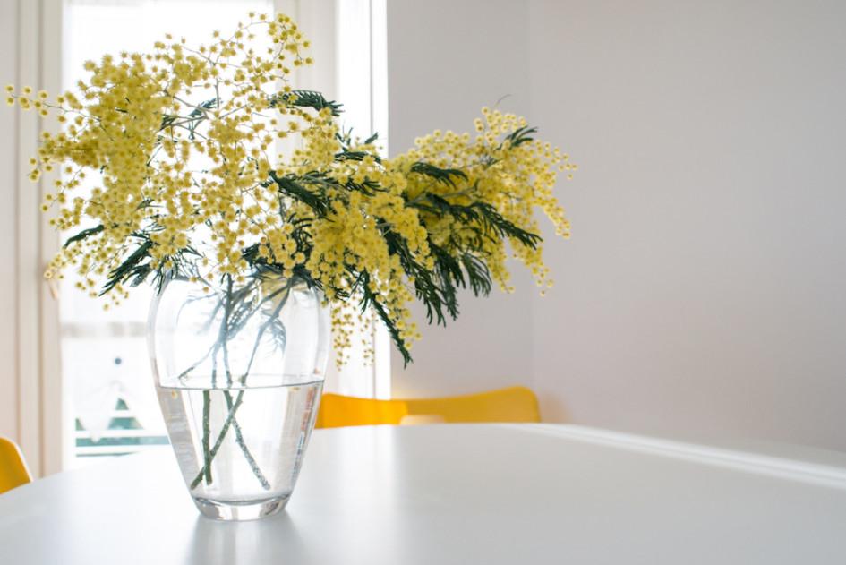 Цветы могут легко обновить квартиру.Сейчас бум популярности на цветущие ветки, мимозу