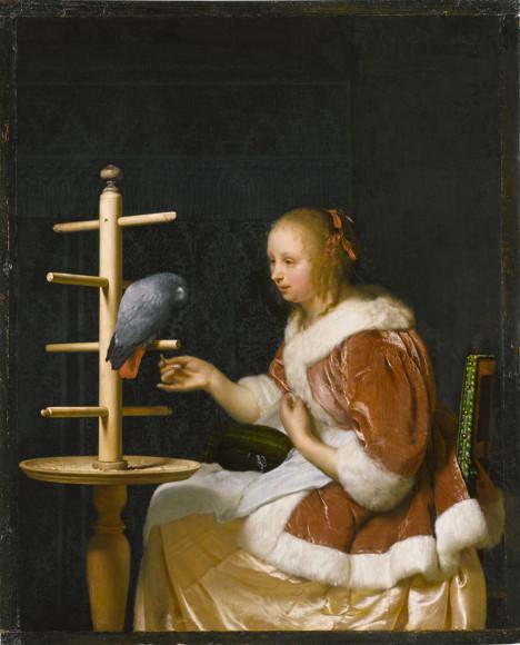 Франц ван Мирис. «Молодая женщина кормит попугая»