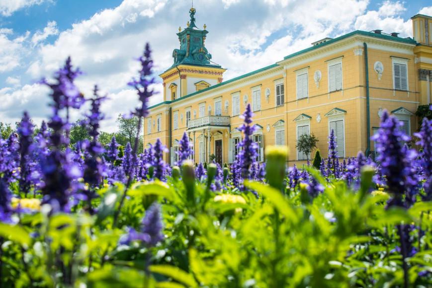 Музей в Вилянуве (Muzeum Pałacu Króla Jana III w Wilanowie), самый богатый из всех варшавских дворцов