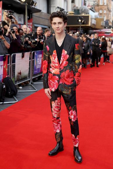 Тимоти Шаламе на премьере фильма «Красивый мальчик» в Лондоне