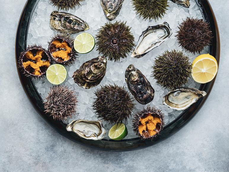 Морские деликатесы (Wine & Crab)