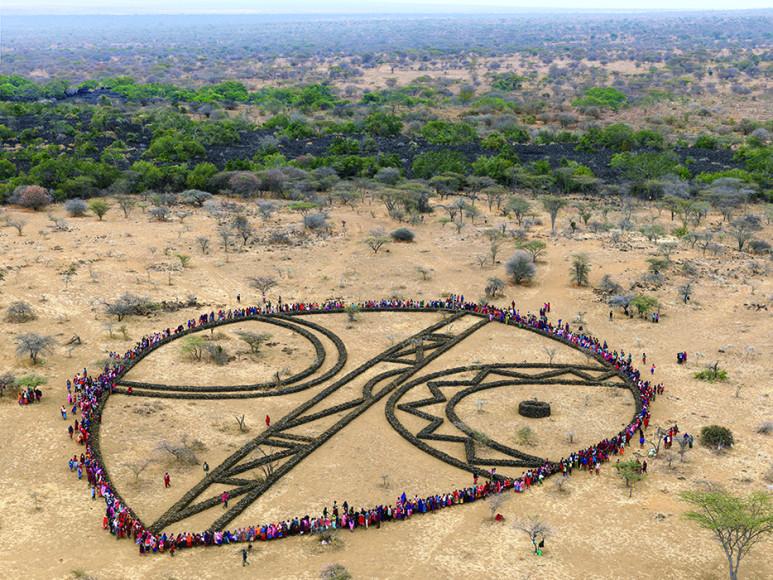 «Shield», Кения