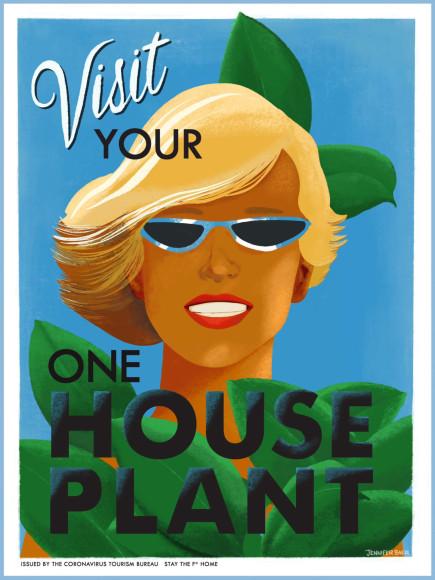 «Посетите ваше комнатное растение»