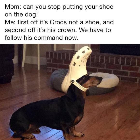 Мемы от компании Crocs