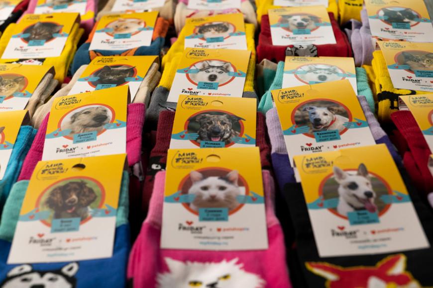 Носки St. Friday Socks с фотографиями реальных питомцев из приютов
