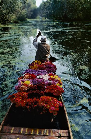 Стив МакКарри. Продавец цветов на озере Дал. Сринагар, Джамму и Кашмир, Индия, 1996