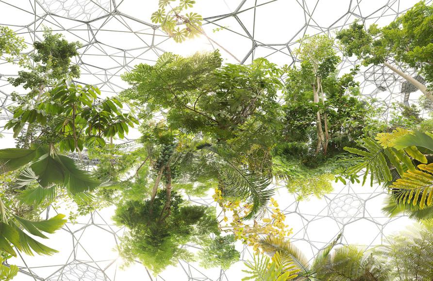 Михаэль Наджар. «Космический сад», 2013