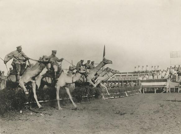 Неизвестный автор. «Перед приходом британцев. Национальные африканские скачки на верблюдах «Гранд Нэшнл»», 1914-1915