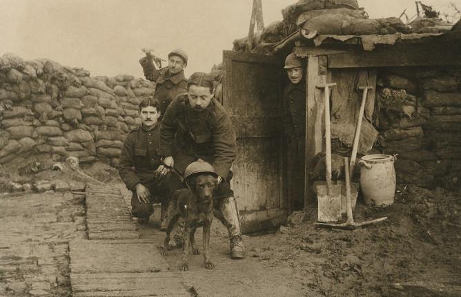 Неизвестный автор. «Любимец окопов, который знает войну», 1914-1918