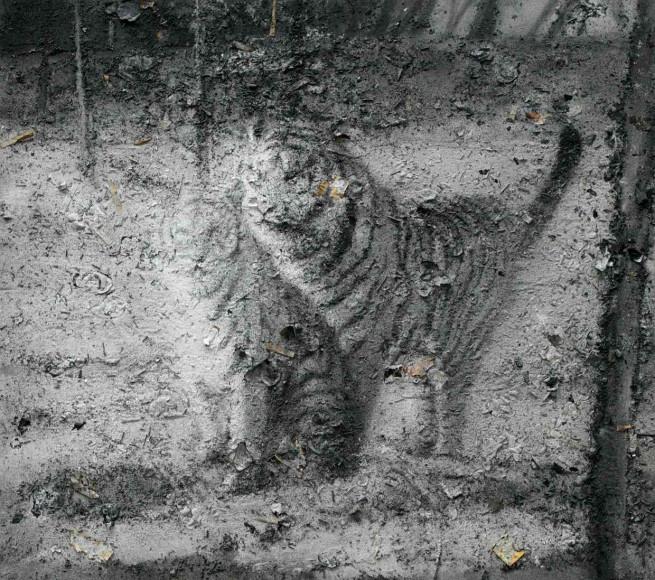 Чжан Хуань. «Свободные тигры возвращаются в горы, No 12», 2010