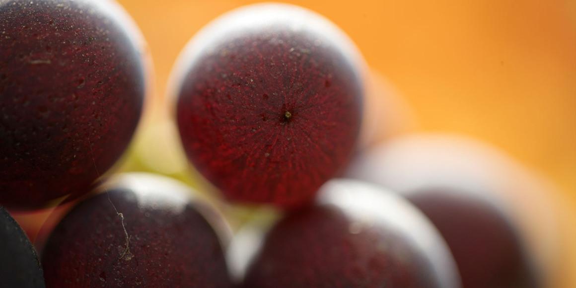 Фото: roagna.com