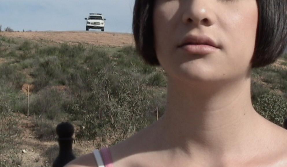 Шанталь Пеньялоса. «Над авеню Мексики», 2013