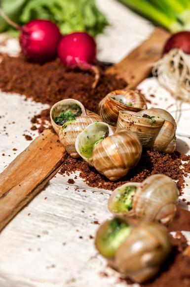 Улитки «Escargot» в саду от шеф-повара («земля» из хлеба, свежий редис, морковь)
